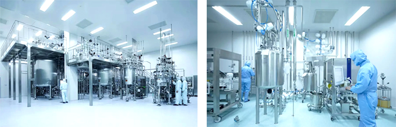 Biological Cleanroom Partition Wall Systems